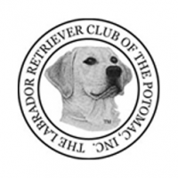 The Labrador Retriever Club of the Potomac
