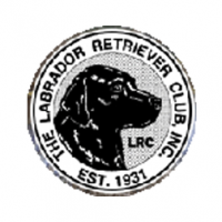 Labrador Retriever Club, Inc.